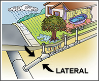 Illustration showing what a sewer lateral is.