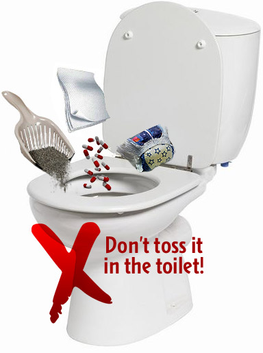 Pills, cat litter, flushable wiped going down the toilet - Don't toss it in the toilet!